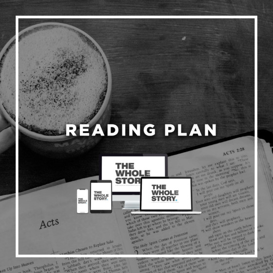 The Whole Story Reading Plan 3