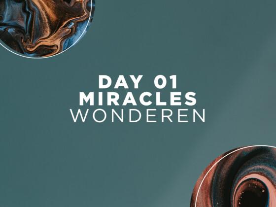 DAG 01 | Wonderen 2
